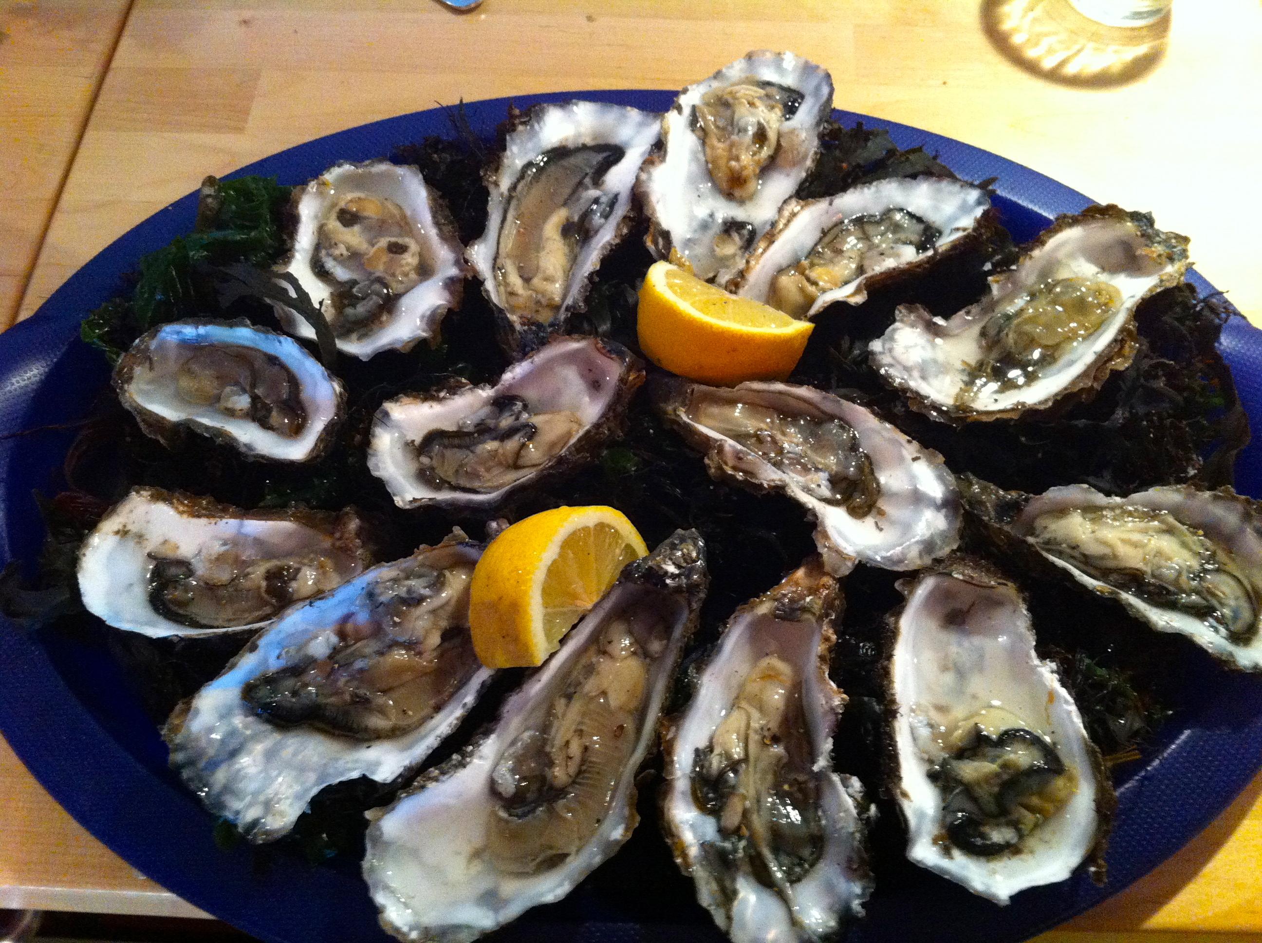 oesters op schaal